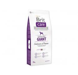BRIT CARE GRAIN-FREE GIANT SALMON & POTATO 12 KG (294-132730)